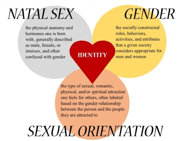 sex-gender-sexual-orientation